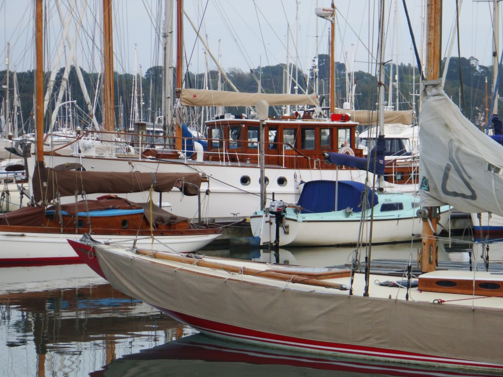 Various boats at the Elephant moorings